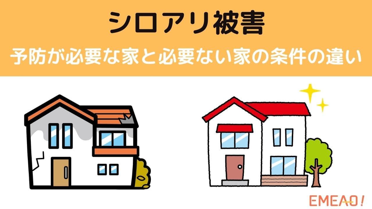 シロアリ被害の予防が必要な家と必要ない家の条件の違いとは